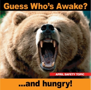Bear waking up