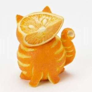 funny-food-awesome-1